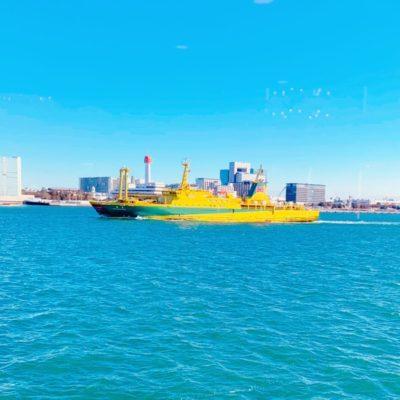 ブラジルカラーの船