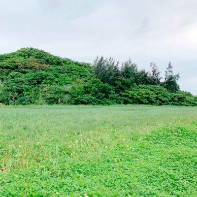 石垣島の大自然