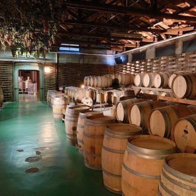モンデ酒造「ワイン貯蔵場」