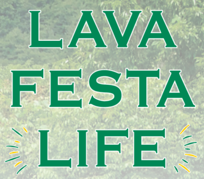 LAVA FESTA LIFE